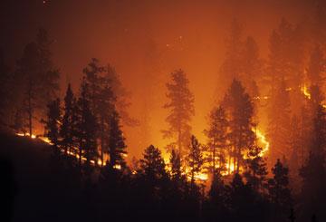 fire-157384116_360
