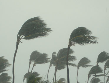 hurricane-480386290_370
